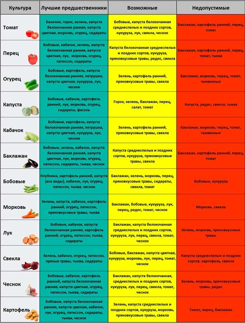 Таблица севооборота культур на огороде